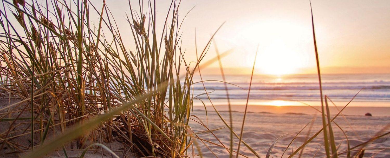 beach-dawn-evening