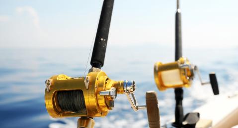 bolivar peninsula fishing